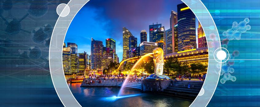 Singapore Biennial Users Meeting