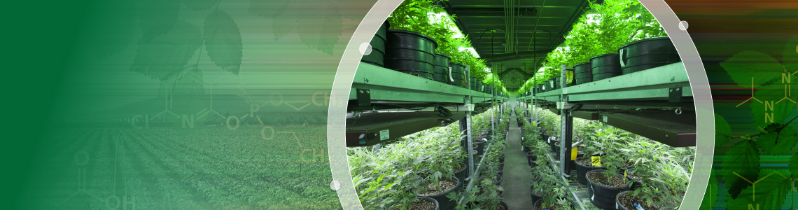 Improved Pesticide Quantitation in Cannabis Products with LC-MS/MS and Advanced MRM Scheduling Algorithms