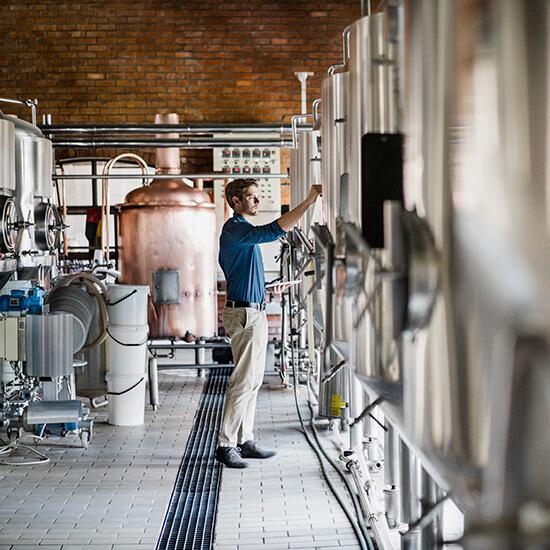 Beer Proteomics