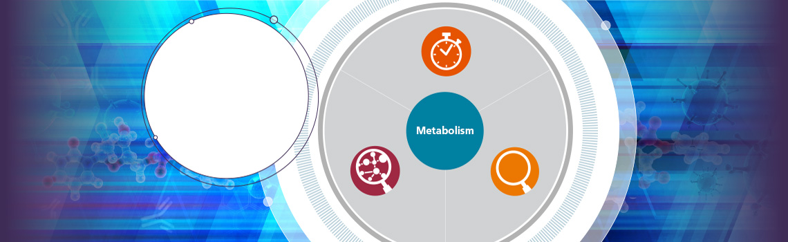 代谢和生物转化解决方案